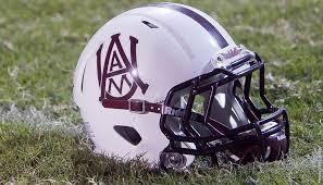 AA&M helmet
