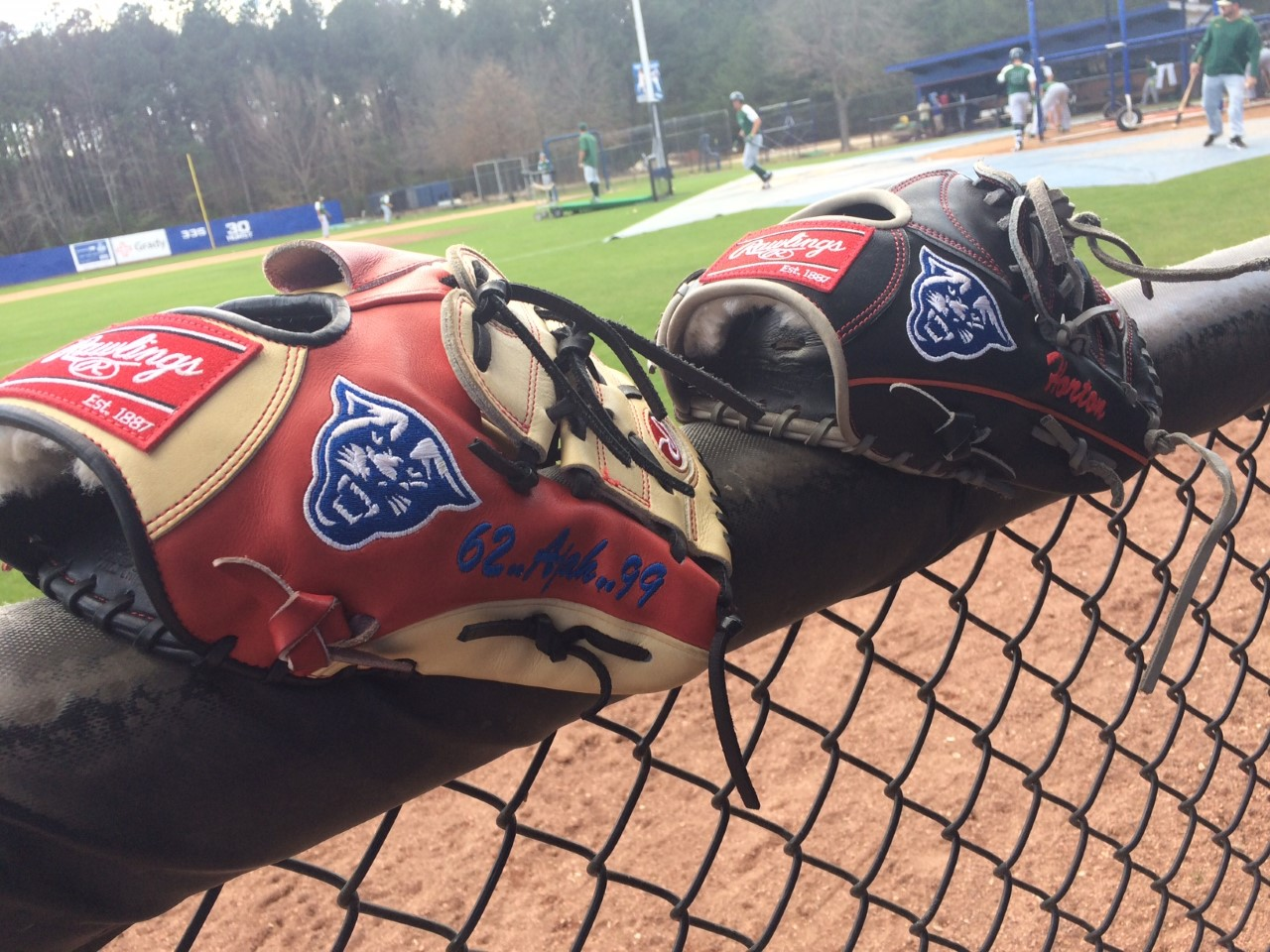 gsu baseball gloves